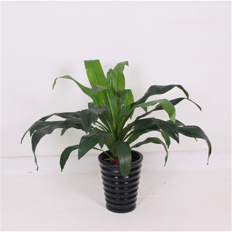 Good offer custom design striking artificial plant with roots