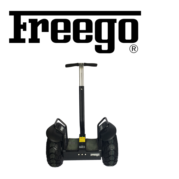 Freego electric scooter parts brush motor lithium battery electric scooter convention kit