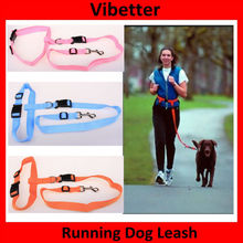 2015 China Wholesale Pet Product Supply Running Dog Leash Running dog collar and leash for doing sport keep dog fit