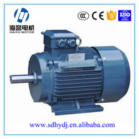 high voltage y/y2 series three phase ac electric motor