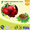 Healthcare Product Control Weight Hawthorn Extract