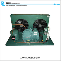 10hp 15hp 25hp 30hp High Quality Bitzer Semi-Hermetic Compressor Air Cooled Open Type Condensing Unit For Cold Room