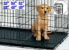 stainless steel dog cage pet carrier