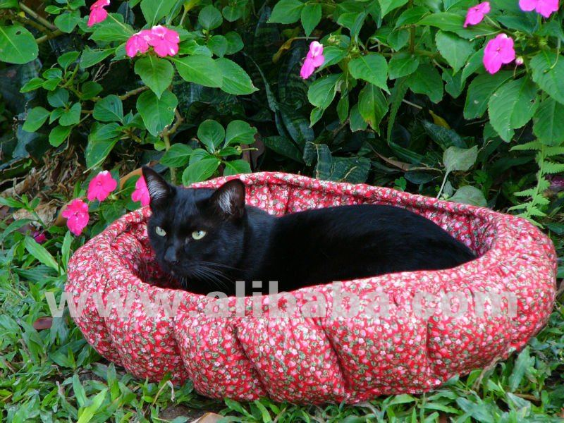 Black Cat Bedding