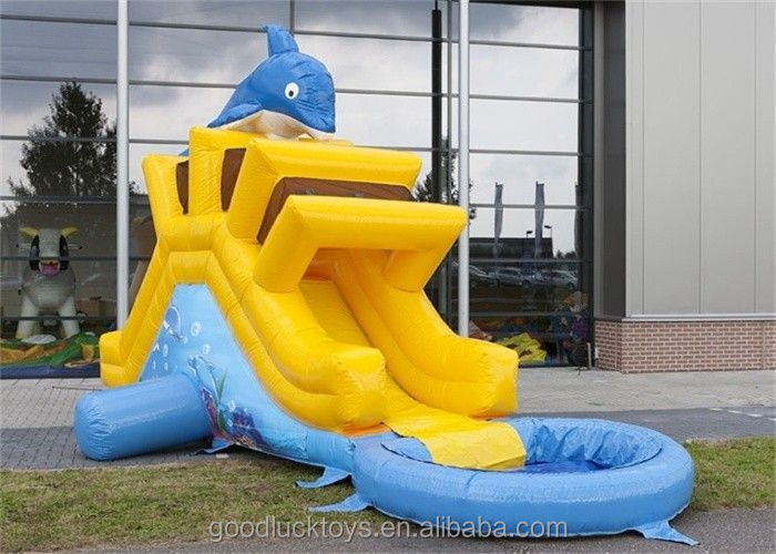 inflatable dolphin water slide, big wave water slides for sale