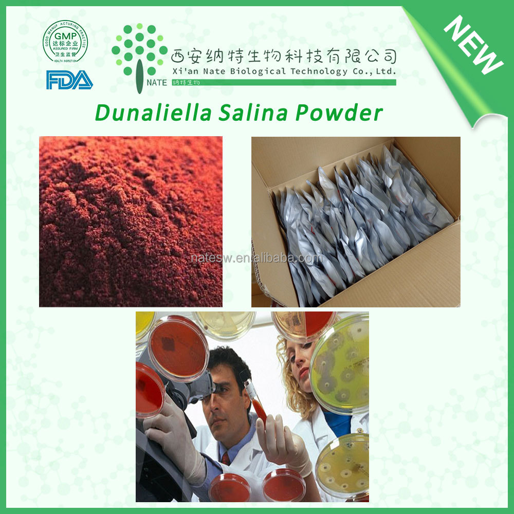 Health supplement dunaliella salina powder beta carotene with 10%