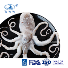 Seafood frozen long leg octopus price (Octopus variabilis)