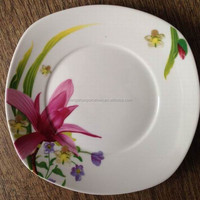 microwave safe dishes / luxury disposable plates / mini porcelain dish