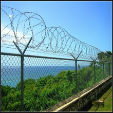 Concertina Razor Wire/Galvanized Concertina Razor Wire/Hight Security Razor Barbed Wire (Factory)