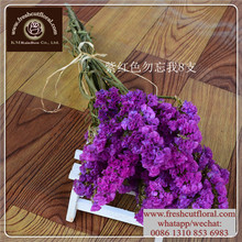 Free Shipping Lavender Dried Available All Year