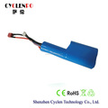 Lifepo4 cells, 9.6V 2500mah battery, lifepo4 battery pack