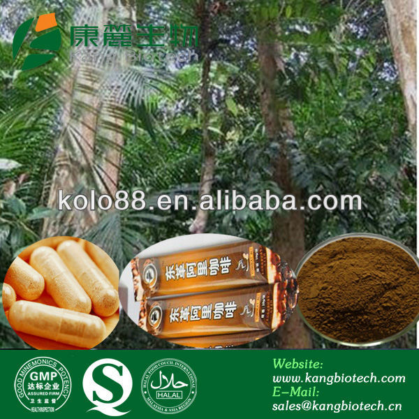 Hot Selling sex products Tongkat ali Roots P.E, Tongkat Ali Root Extract Free Sample Tongkat Ali Root Powder