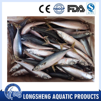 Healthy Sea Food Dried Whole Round Frozen Pacific Mackerel Fish
