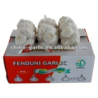 Organic Garlic/Shandong Garlic For Europe Market/Global G.A.P Approved