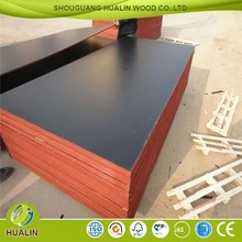 shandong 12mm film faced plywood manufacturing plant/plywood sabah
