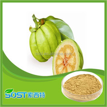 high quality garcinia cambogia extract supplier online shopping