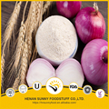 Factory supply good prices white onion powder red fresh onion