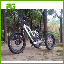 economical electric fat tire tricycle 48v lithium battery three wheel electric bike 500w Rhinoceros