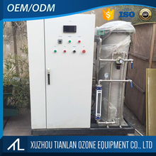 10g Pipeline disinfection ozone generator for water treatment