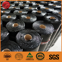 Polymer Modified Bitumen Self Adhesive Waterproof Roll Materials for Basement and Pool