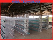 chicken wire cage rock wall/large bird cages for sale,animal transport cage,laboratory animal cage