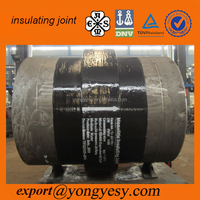 monolithic pipe insulation joint standard with CS