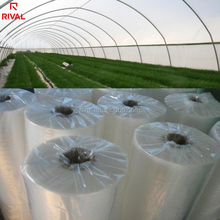 China Suppliers UV blocking agriculture polyethylene film plastic greenhouse