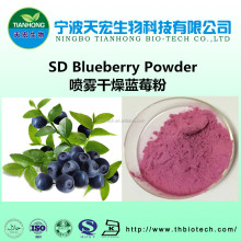 100% Pure Blueberry Fruit Juice Powder Manufacturer in tianhong factory