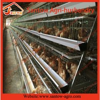 Broiler battery cage for chicken farm