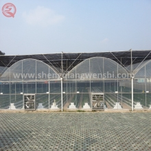 China factory direct vegetable garden greenhouse