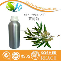Pure tea tree oil essential oil with aromatic smell
