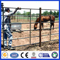 DM Metal Corral Horse Fence Panels For Sale