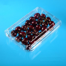 clamshell plastic fruits and vegetables blueberry container