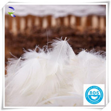 Natural raw white grey duck /goose down feather