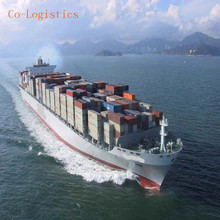 universal logistics services to Egypt from China by sea