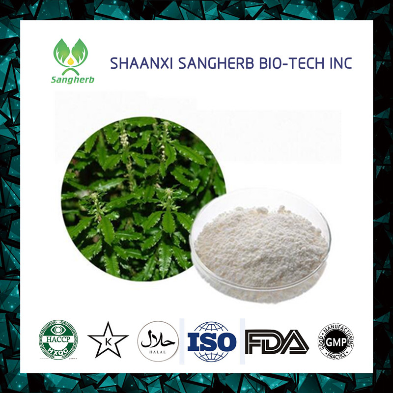 Factory Supplier raw material huperzine extract Exported to Worldwide