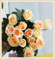 top sale high quality wedding decor fresh cut large petals yellow light roses