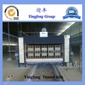 Large Capacity Brick Tunnel Oven For Sale