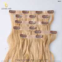 2016 new products clip in human hair extensions for black women