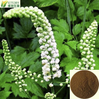 100% natural top quality black cohosh extract