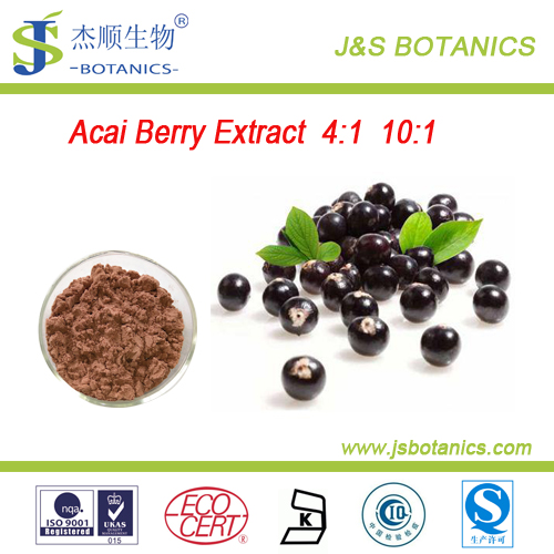 100% Natural Brazilian Acai Berry Extract powder 4:1 10:1 Manufacturer Supply