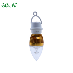 Manufacturing Plant Plastic Mould Manufacturer Rechargeable 3W LED Lamp Bulb