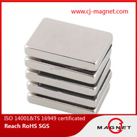 High Powerful High Quality Sintered Ndfeb Magnet with TS16949 Certification