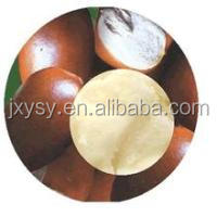 100% pure and natural shea butter skin care products in bulk