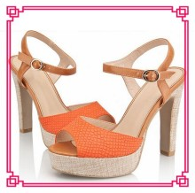 Fashion Sexy High Heel Lady Sandal Shoe Latest Design 2014 Women Strappy High Heels Platform Sandals