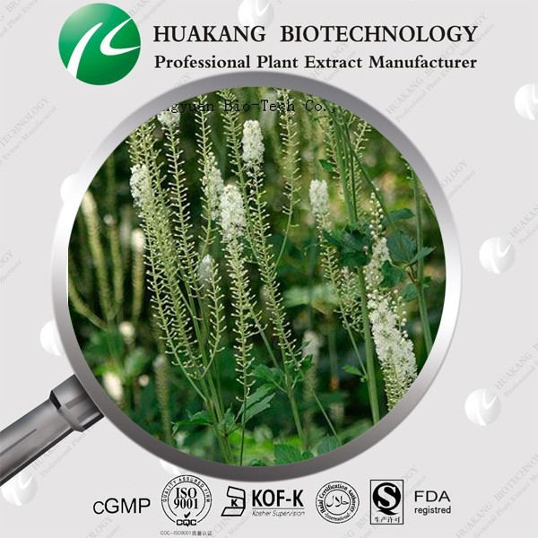 GMP Standard Manufacturer Supply Black Cohosh Extract,CAS No:18642-44-9
