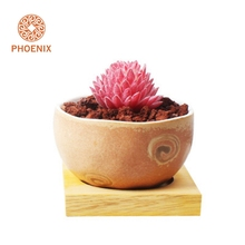 Desktop Best Choice Ceramic Half Round Flower Pot