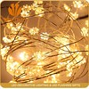 Holiday Items 3V 12V 110V 220V china christmas light for sale