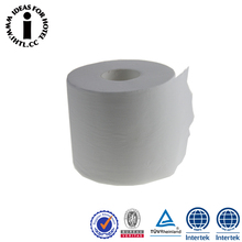 Wholesale Cheap Printed Hotel Toilet Paper Tissue