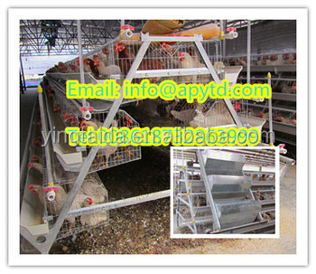 High quality galvanized h type layer chicken poultry cage/h type battery cages for laying hens